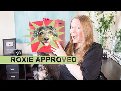 PETS Gift Guide 2018 || Autumn Beckman