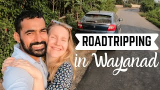 Wayanad - the most beautiful region in Kerala? part 1 + the BIG mistake in my travel plan!