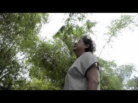 PASALOAD Trailer