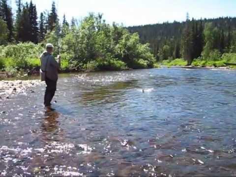 рыбалка хариуса и тайменя в горных реках