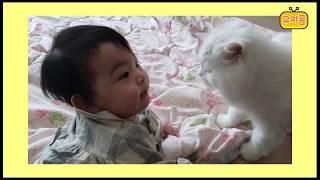 육아브이로그 9개월아기 일상