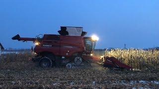 Żniwa kukurydziane 2018- 23 stycznia, 20cm śniegu! Case 4x4 gąsienica 9240+  przystawka 12 rzędów!
