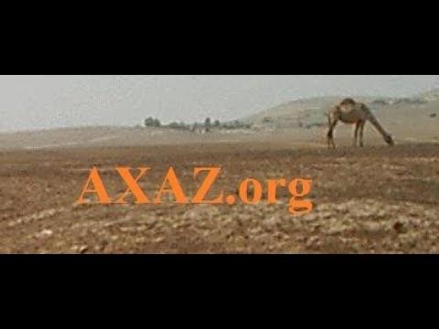 Учите арамейский язык на канале «Арамейский язык – для всех»