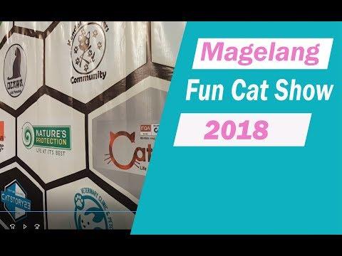 magelang fun cat show 2018