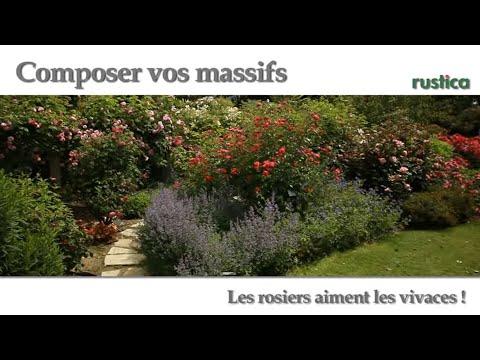 Comment r aliser un joli massif de plantes vivaces v for Creer un massif de plantes vivaces