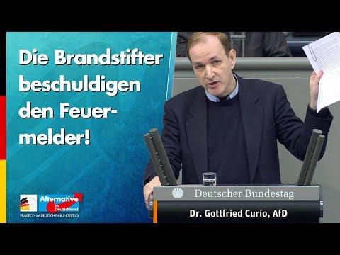 Die Brandstifter beschuldigen den Feuermelder! - Dr. Gottfried Curio (AfD)