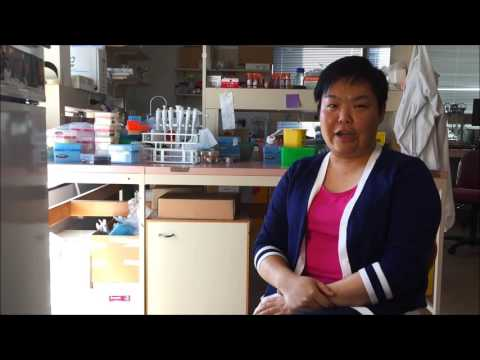 Dr Connie Wong,  Centre for Inflammatory Diseases, Monash University