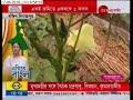 Egiye Bangla: Multiple corps farming in same land at same time making profit