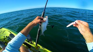 A Day on the Kayak Fishing Montauk for Whatever Bites