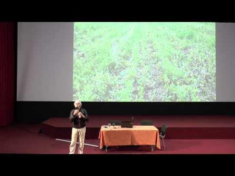 Lucien SEGUY : Lucien Séguy : L'ingénierie écologique pour des systèmes de production durables - 4