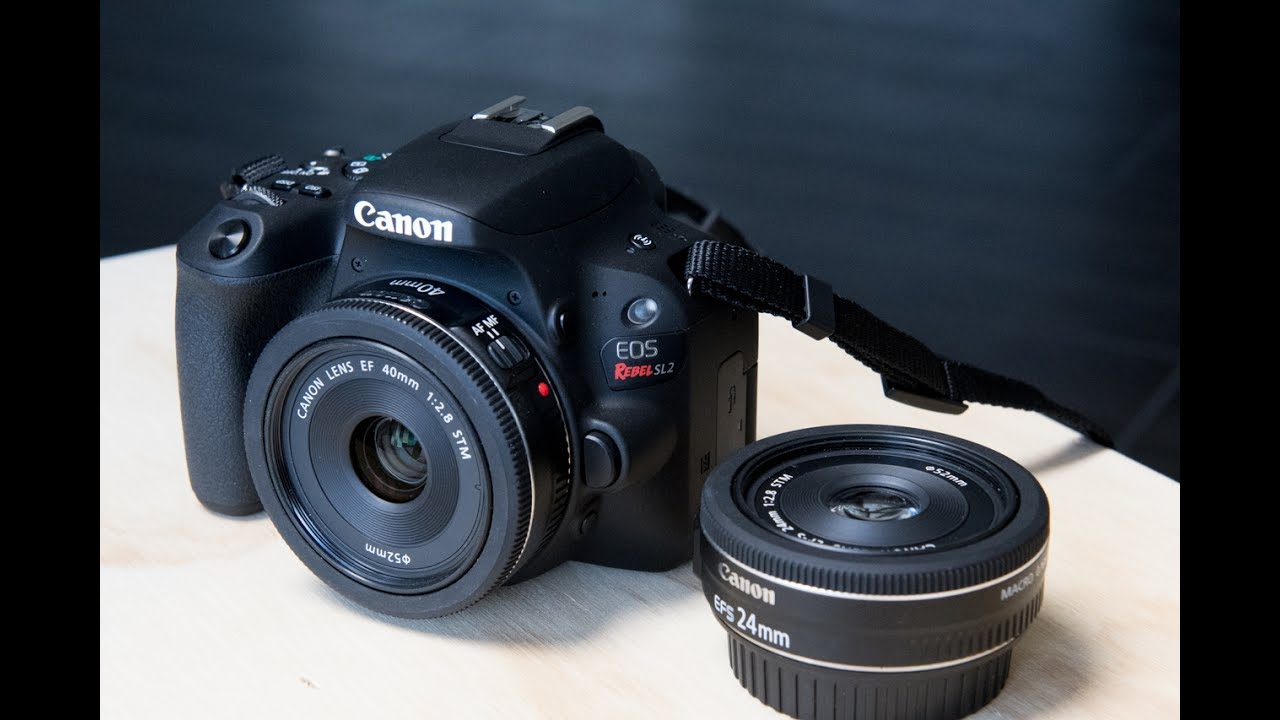 Image result for Canon EOS Rebel SL2 / EOS 200D