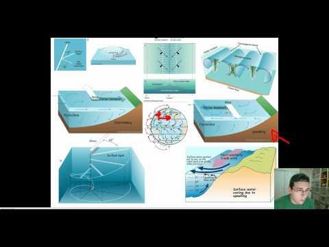 Ocean Currents (Part 5): Ekman Transport & Upwelling / Downwelling