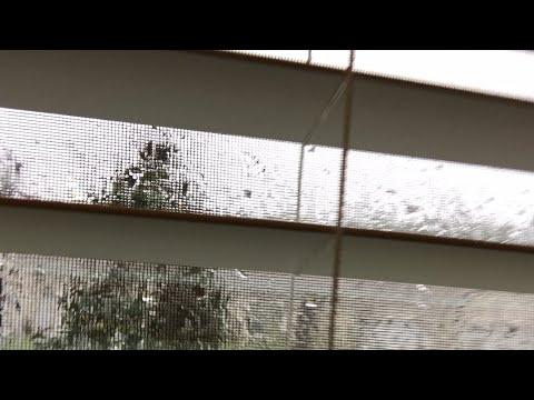 FIRST TIME LIVE - Hurricane Irma