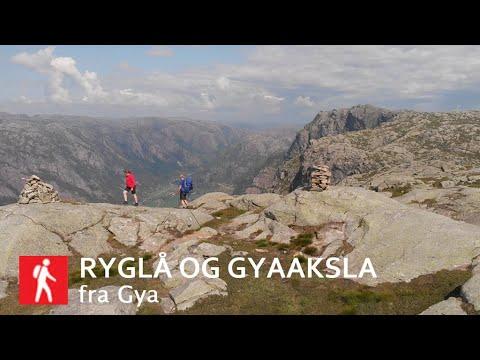 Ryglå (736 moh)