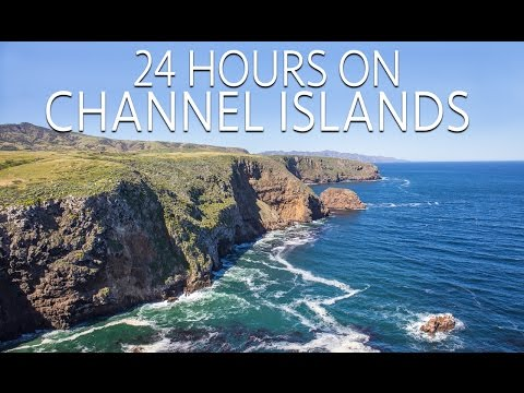 Channel Islands in 24 Hours: Exploring & Hiking on Santa Cruz Island