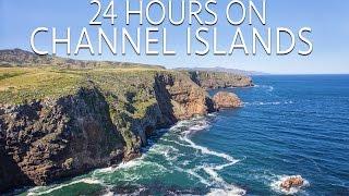Channel Islands in 24 Hours: Exploring & Hiking on Santa Cruz Island