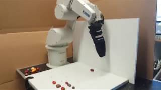 Robot grasping fruit, vegetable and sweets. Manipulation in space