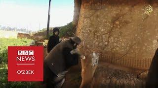 ИШИД  портлатган масжид остидан қаср топилди - BBC Uzbek
