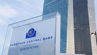 Role of ECB in the Crisis Is Very Crucial: Foley