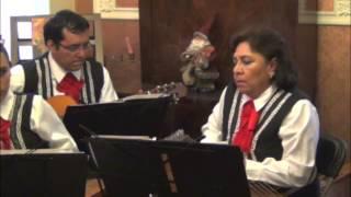 """Vals mexicano """"Tristes jardines"""" interpretado con salterios"""