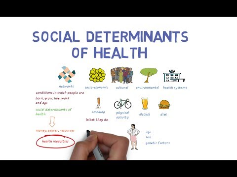 Social Determinants Of Health An Introduction Youtube