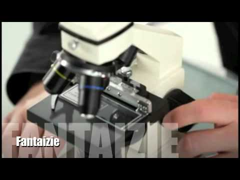 Microscope bresser biolux pour les études le collège ou le lycée