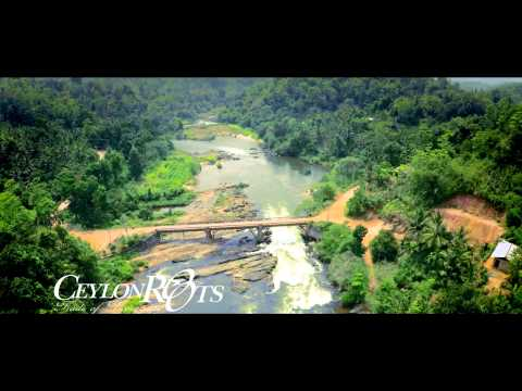 Amazing Sri Lanka - Ceylon Roots