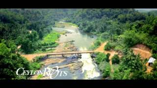 Amazing Sri Lanka - Ceylon Roots