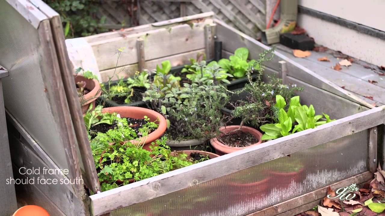 how to make a cold frame for plants