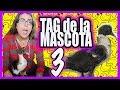 TAG DE LA MASCOTA - MI PATO (EVADEMETAL)