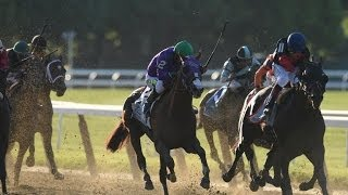 2014 Belmont Stakes - Tonalist + Post Race