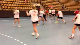 z23 handball camp lund 2013
