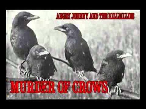 """Angry Johnny And The Killbillies """"Murder Of Crows"""""""