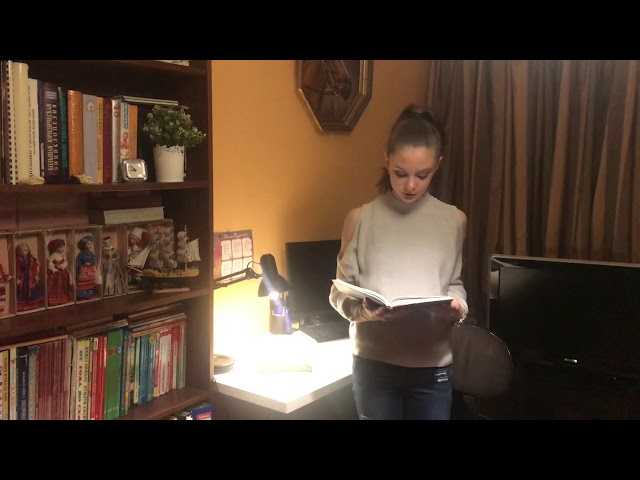 Изображение предпросмотра прочтения – АлинаСклянкина читает отрывок изпроизведения «И.Тургенев Бежин луг (отрывок)» И.С.Тургенева