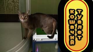 Автоматический кошачий туалет за 1500 рублей своими руками