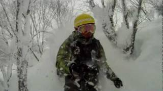 29 Jan 2012  MADARAO POWDER REPORT