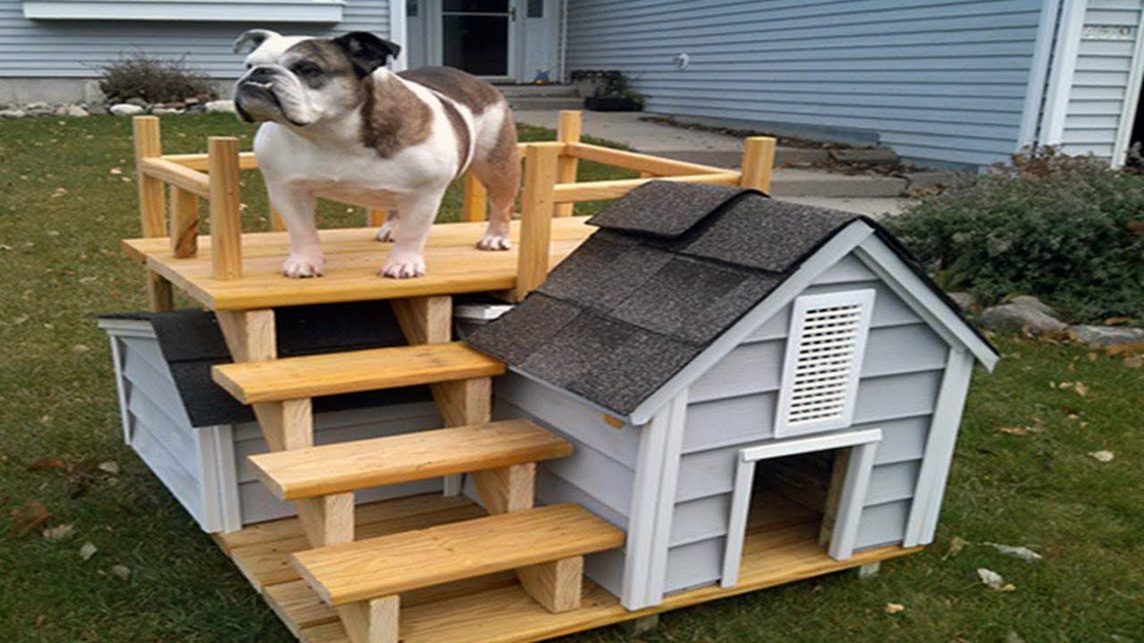 Free Dog House Plans Anyone Can Build - YouTube