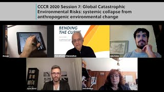 Global Catastrophic Environmental Risks: systemic collapse from anthropogenic environmental change