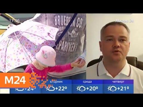 Синоптики пообещали москвичам осеннюю погоду - Москва 24