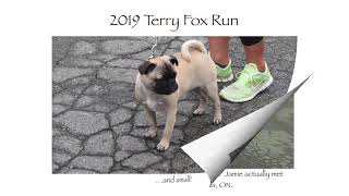 2019 Terry Fox Run