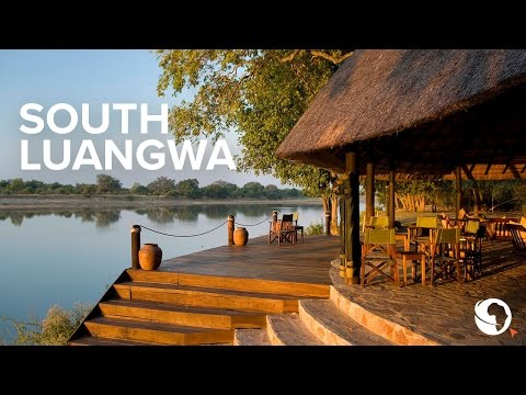 Safari in Zambia's South Luangwa