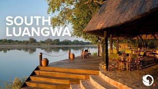 Safari in Zambia's South Luangwa
