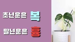[Ion 에너지 치유] 초년운은 복/말년운은 흉