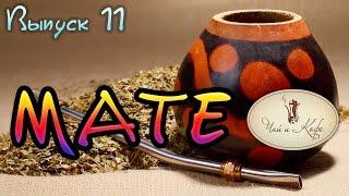 11 выпуск. Чай и кофе. Бодрящий чай - Мате(, 2015-03-02T10:24:03.000Z)