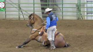 Kiger Mustang Stallion, Regalo ridden by Ruben Villasenor, Albany Expo 2010