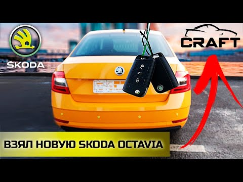 Ситимобил / Таксую на Skoda Octavia / Комфорт / Таксопарк CRAFT / Позитивный таксист