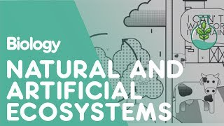 The Differences Between Natural and Artificial Ecosystems | Biology for All | FuseSchool
