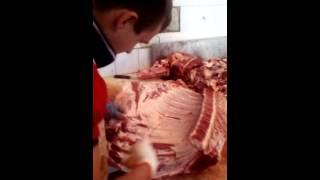 Обвалка говядины 1