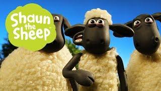 Trả lại Người gửi - Những Chú Cừu Thông Minh [Return to Sender - Shaun the Sheep]