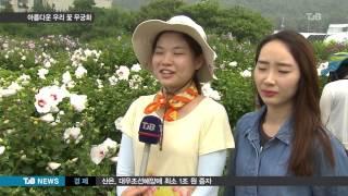 [TJB 8뉴스]나라꽃 무궁화   그 아름다움에 빠지다…